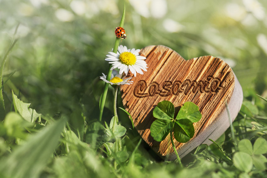 Casamia_Herz